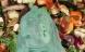Rødovre får poser af genbrugsplast til madaffald