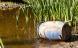 Grindstedværkets forurening siver dybt
