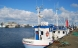 Slut med truede fisk i Netto, føtex og Bilka