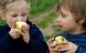 10 fødevarer, der indeholder mest sprøjtegift