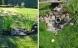 Syv private haver med regnvandsløsninger
