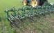 Over ti pct. af landbrugsarealet er nu økologisk
