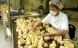 Industri-kyllinger vokser hurtigere end nogensinde