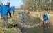Det vrimler med havørreder i Faxe-vandløb