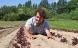 Ny fond på Samsø vil hjælpe unge øko-bønder i gang