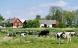 Vi sælger mere dansk økologi til svenskerne