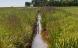 630 millioner skal skabe liv i danske vandløb