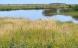 Landmænd får lov at bruge græs fra brakmarker