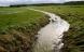 Mindre sprøjtefrie zoner kan ødelægge vandløb
