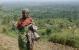 Palmeolien hærger Afrikas regnskove