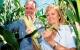 Frankrig og Tyskland siger nej til GMO