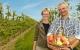 Rift om de økologiske æbler
