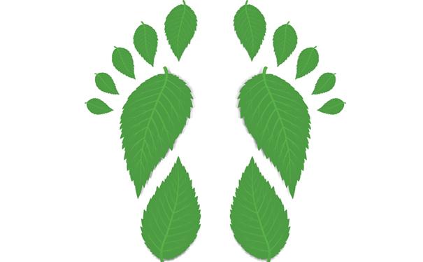Grønt miljø